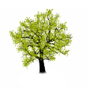 50419373 - tree silhouette isolated on white background