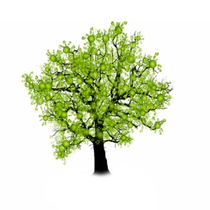 50419378 - tree silhouette isolated on white background